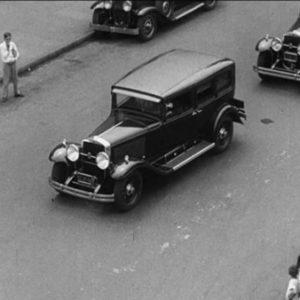 fotosp_hampadorada19307